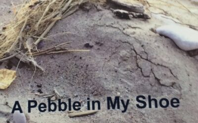 A Pebble in My Shoe